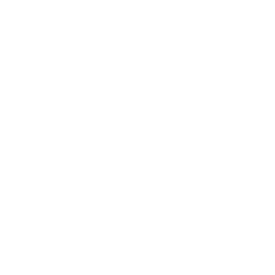 Bayer Cross Logo